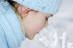 Snow kiss. Stock Photos