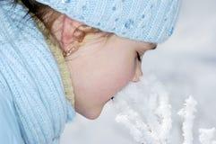 Snow kiss. The girl kisses a snow branch Stock Photos