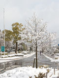 Snow in Kyoto Royalty Free Stock Photography