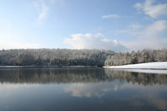 Snow and lake. Lake and snow with frosted trees Stock Photos