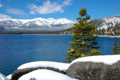 Snow at Lake Tahoe Stock Photography