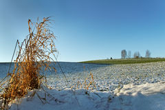 Snow on the land. Stock Images