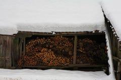 Snow Landscape #15 Stock Photo