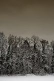 Snow Landscape #5 Stock Photos