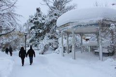 Snow landscape in City Park Stock Images