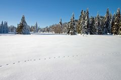 Snow landscape with footsteps Royalty Free Stock Image