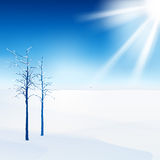Snow landscape Stock Photo