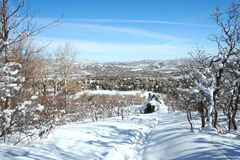 Snow Landscape of Park City. A beautiful landscape of Park City in the winter with a historic mine shaft and snow-covered trees in the foreground Stock Photography