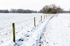 Snow landscape with path between meadows Stock Image