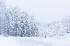 Snow landscape and road Stock Image