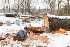 Snow landscape with tree trunks and work gear Stock Images