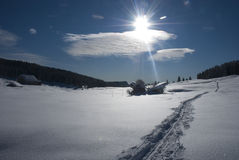 Snow landscape under the sun. A sunny day among the snow Stock Image