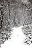 Snow landscape of Wandsworth Common Royalty Free Stock Photos