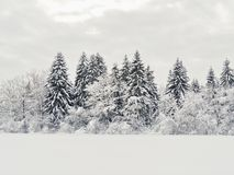 Snow landscape winter Royalty Free Stock Image