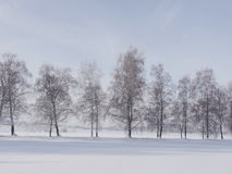 Snow landscape winter Stock Photography