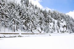 Snow landscape in winter. Spain Royalty Free Stock Photo