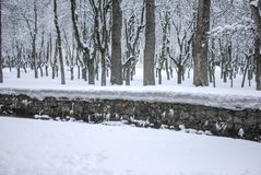 Snow landscape in winter. Spain Royalty Free Stock Images