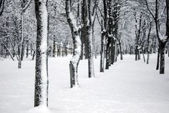 Snow landscape in winter. Spain Royalty Free Stock Image