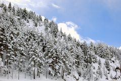 Snow landscape in winter. Spain Royalty Free Stock Photography