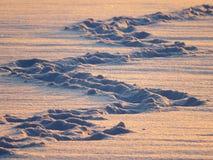 Snow Lane, Traces, Snow, Zig Zag Stock Images