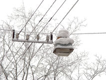 Snow lantern. Pendant city lantern on the wires, covered with snow Stock Images