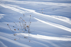 Snow layers background Stock Image
