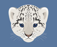 Snow leopard cub face. Vector illustration. Stock Photo