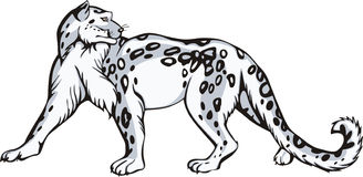 Snow leopard design Royalty Free Stock Image