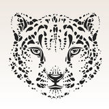Snow leopard head. Snow leopard's head - black silhouette isolated on white background - high quality detailed illustration - great for t-shirt apparel design Royalty Free Stock Image