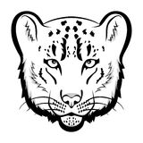 Snow leopard logo mascot. Snow leopard head isolated vector illustration Royalty Free Stock Photography