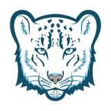 Snow leopard logo mascot. Snow leopard head isolated vector illustration Stock Photos