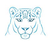 Snow leopard logo mascot. Snow leopard head isolated vector illustration Stock Photography