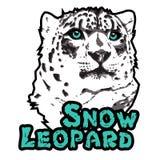 Snow leopard print vector illustration