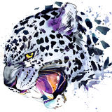 Snow leopard T-shirt graphics, snow leopard illustration with splash watercolor textured background. Stock Images