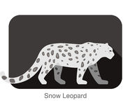 Snow Leopard walking side flat 3D icon design Royalty Free Stock Images