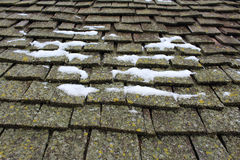 Snow and Lichen Covered Wood Shingles Stock Photos