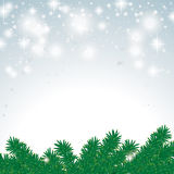 Snow Light Fir Branch Royalty Free Stock Image