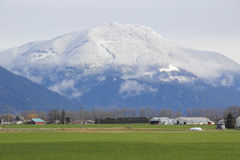 Snow Line on Small Mountain Stock Images