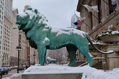 Snow Lions Royalty Free Stock Images