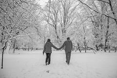 Snow love Stock Photography