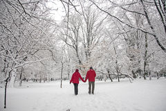Snow love Royalty Free Stock Images
