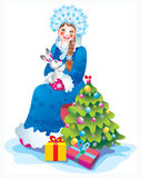 Snow maiden. Bright Christmas party, gifts, hope, love Stock Images