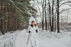 Snow Maiden Father Frosts granddaughter 1475. Stock Photo