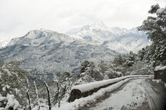 Snow in Majorca Royalty Free Stock Photos