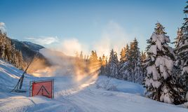 Snow making on a cat track next to snow covered trees. stock photography