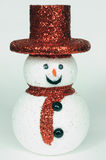 Snow man with red hat Stock Image