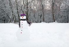 Snow man standing Stock Photography