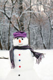 Snow man standing closeup Stock Photography