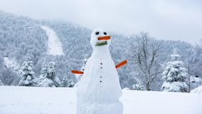 Snow Man in Winter, Snow Man with Carrot Nose and Forest with Mountains in the Background, Snowman in Snowy Weather stock photo