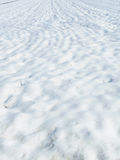 Snow meadow. White snow meadow in winter stock photography